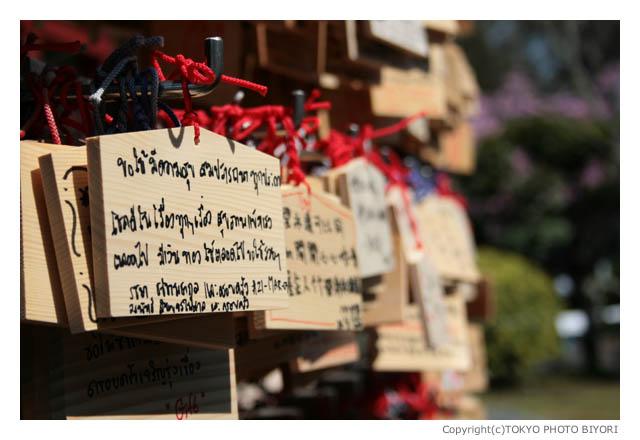 上野公園は春の匂い_f0181689_15154781.jpg