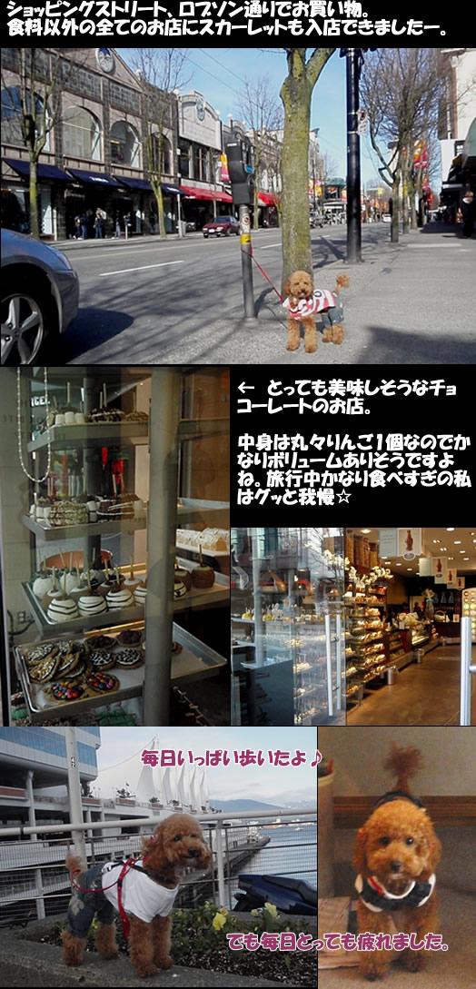 c0164491_13254737.jpg