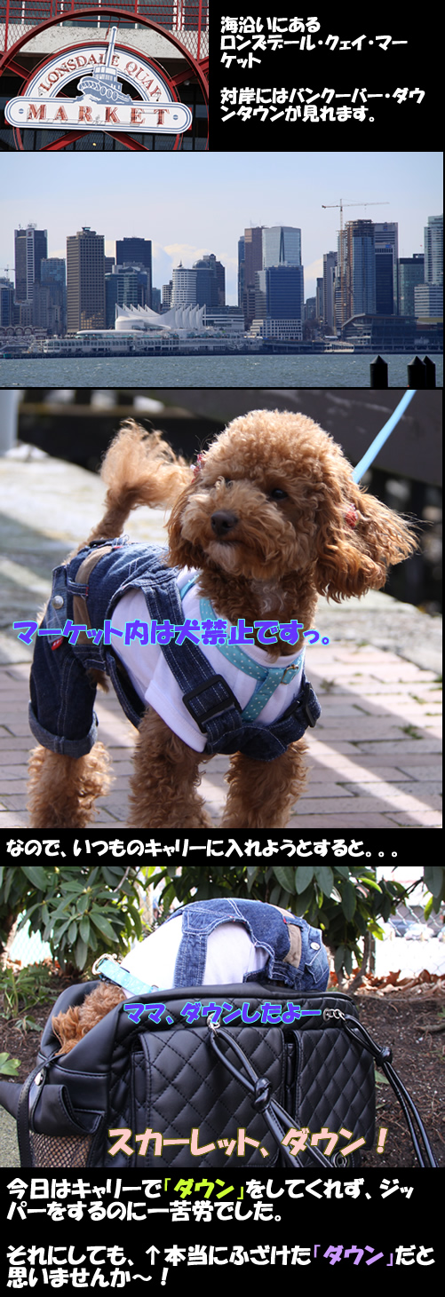 c0164491_14332080.jpg