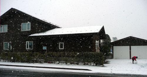 雪だるまさん!_f0150893_16555229.jpg