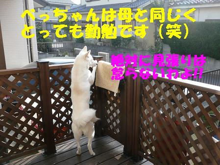f0121712_16195968.jpg