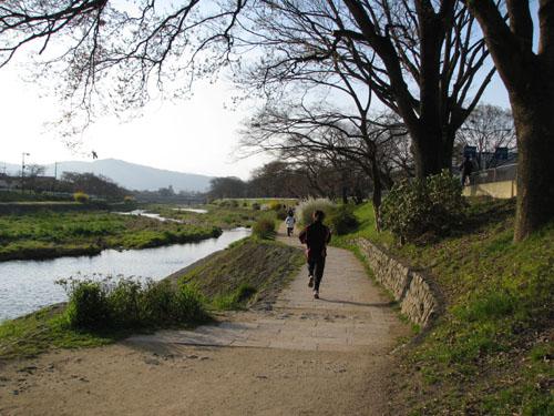 鴨川に春が_e0048413_2342924.jpg