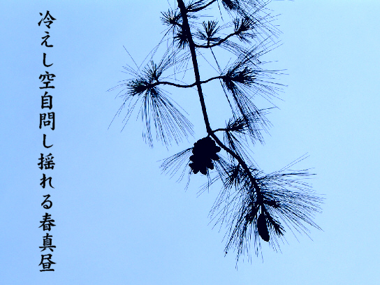 春真昼_e0099713_22341943.jpg