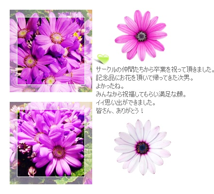e0136420_2252681.jpg