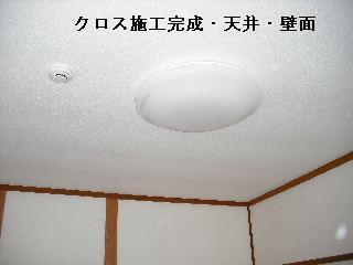 f0031037_19554999.jpg