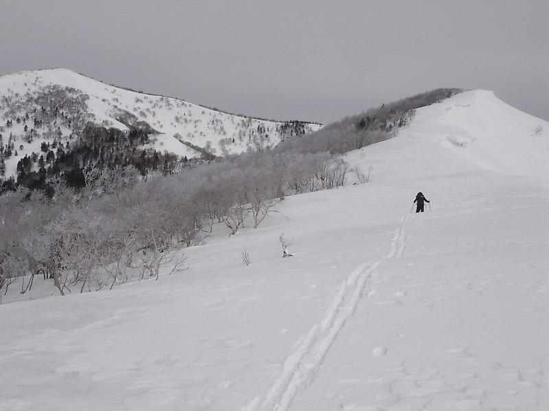 3月28日、日高の労山熊見山_f0138096_18184123.jpg