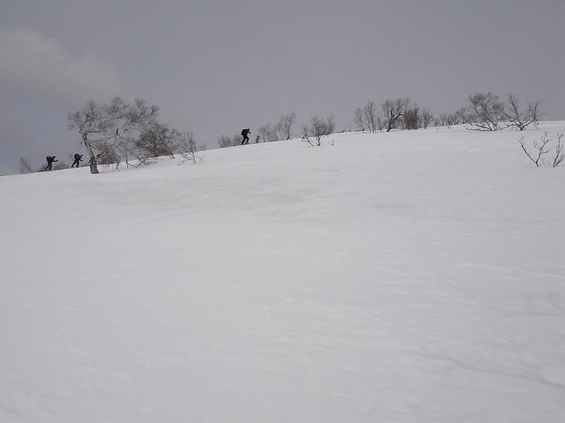 3月28日、日高の労山熊見山_f0138096_18192560.jpg