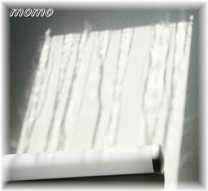 f0088197_2315655.jpg