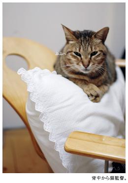 PCちうも,こっそり猫監督。