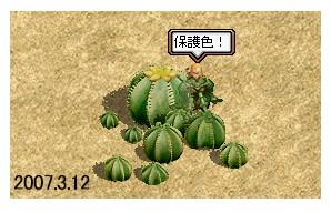 f0147805_1139172.jpg