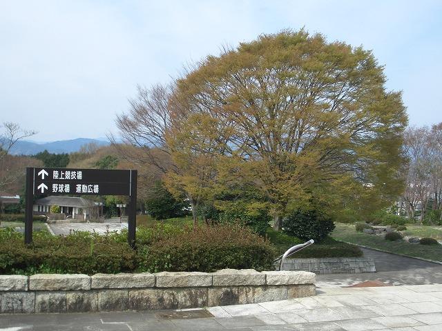 富士市立吉原商業高校野球部 最高のスタート!_f0141310_1712250.jpg