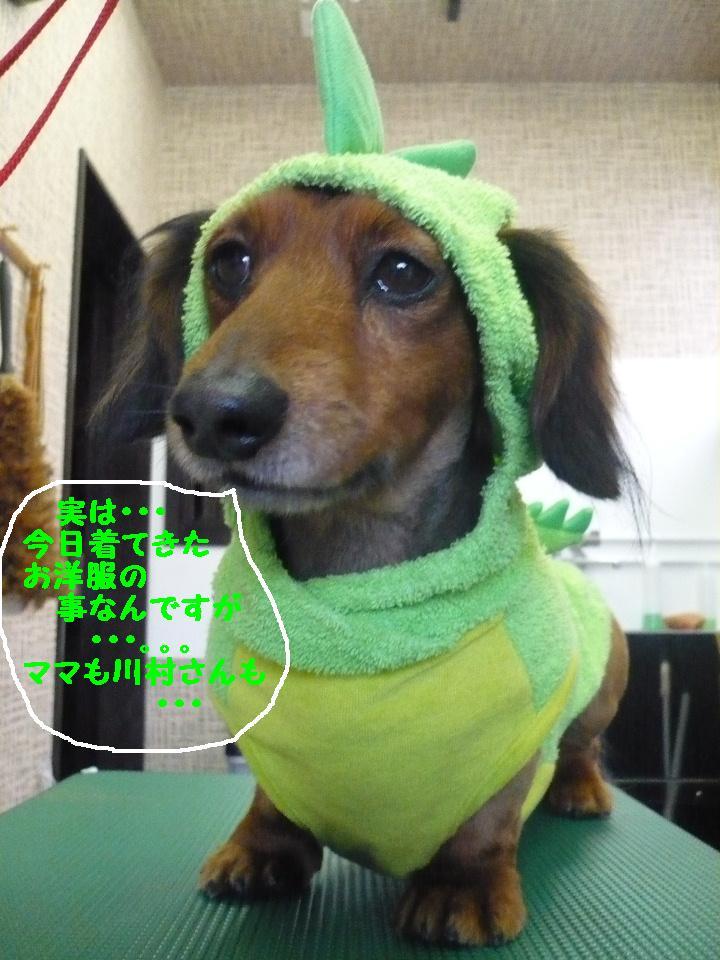 最弱の・・・&もうお姉さんよ!&犬濯屋レシピ!!_b0130018_17411563.jpg