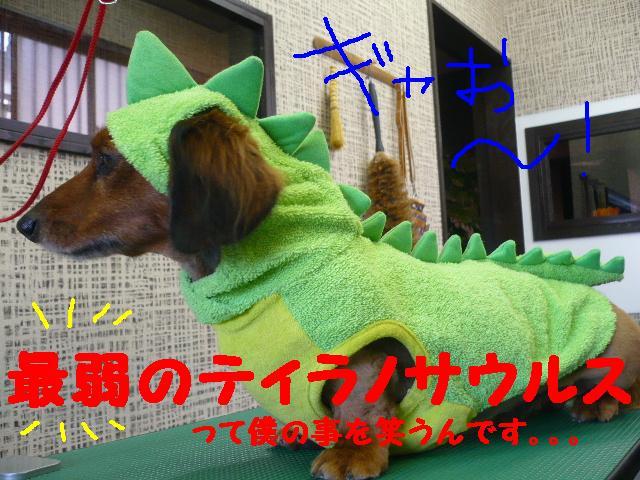 最弱の・・・&もうお姉さんよ!&犬濯屋レシピ!!_b0130018_17411718.jpg