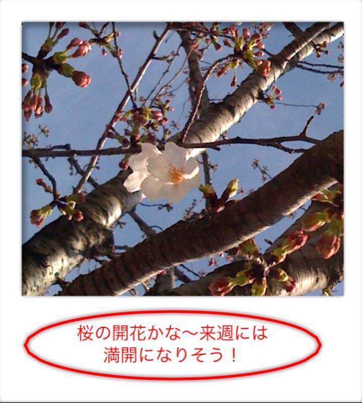 f0119734_13492423.jpg