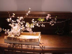 3月の和菓子_c0187754_2211965.jpg