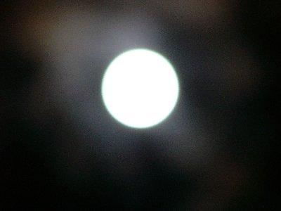 f0175754_7102731.jpg