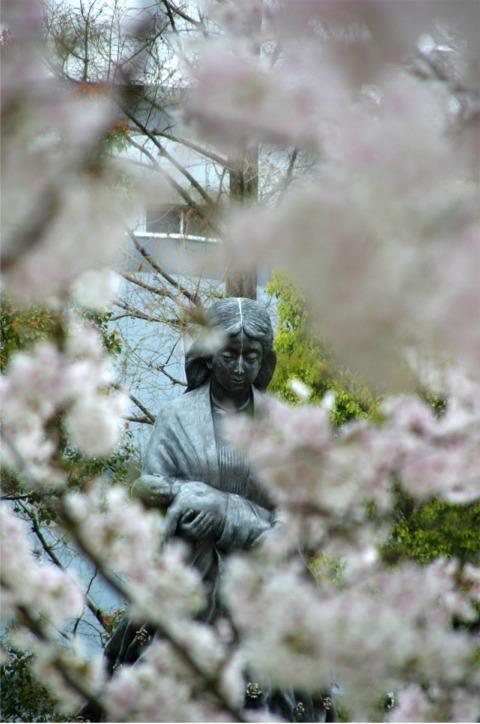桜・・・写真・・・散策_f0051464_10142745.jpg