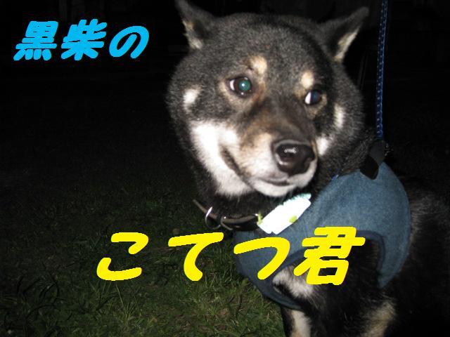 f0180994_2211820.jpg