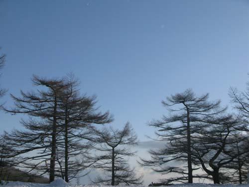 天気雪_e0120896_1151737.jpg