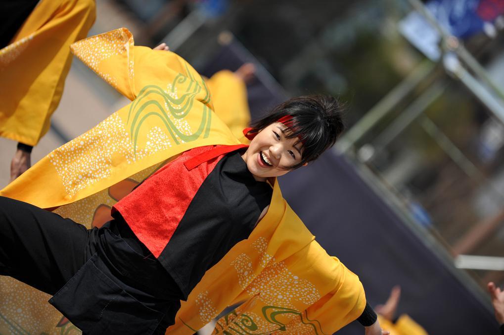 2009浜松よさこい「がんこ祭り」_f0184198_2135424.jpg