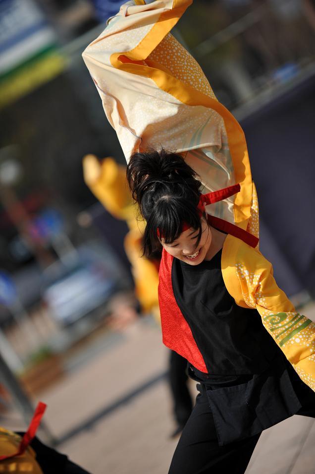 2009浜松よさこい「がんこ祭り」_f0184198_2135534.jpg