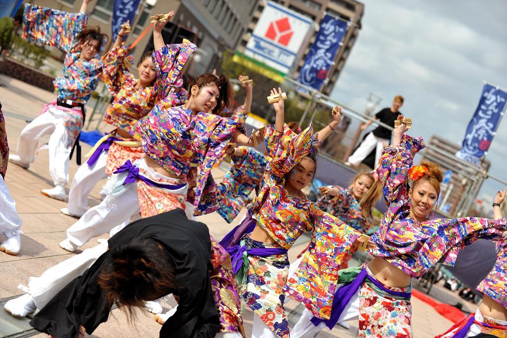 2009浜松よさこい「がんこ祭り」_f0184198_7482466.jpg
