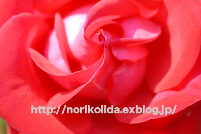d0086230_22551353.jpg