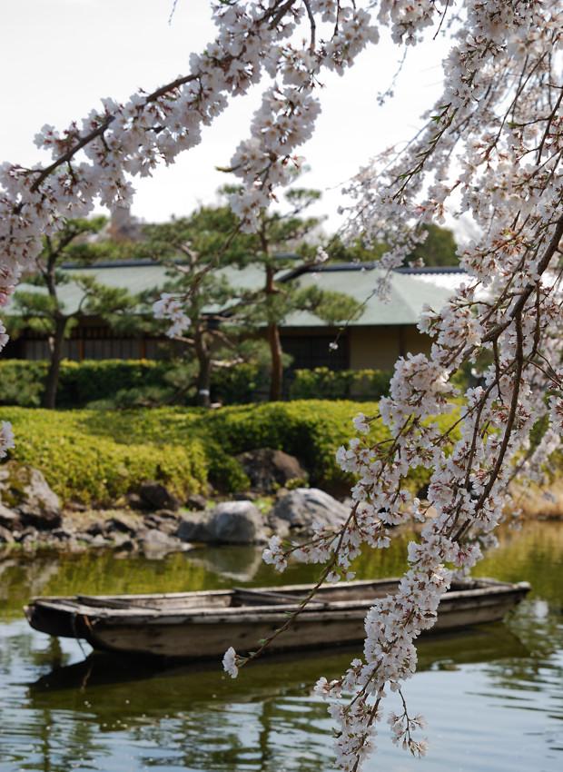 白鳥庭園_c0171945_2223350.jpg