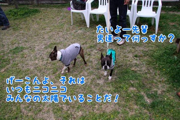 f0166359_1220392.jpg