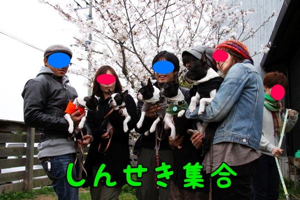 f0166359_1234440.jpg