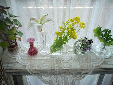 菜の花_d0006467_18363552.jpg