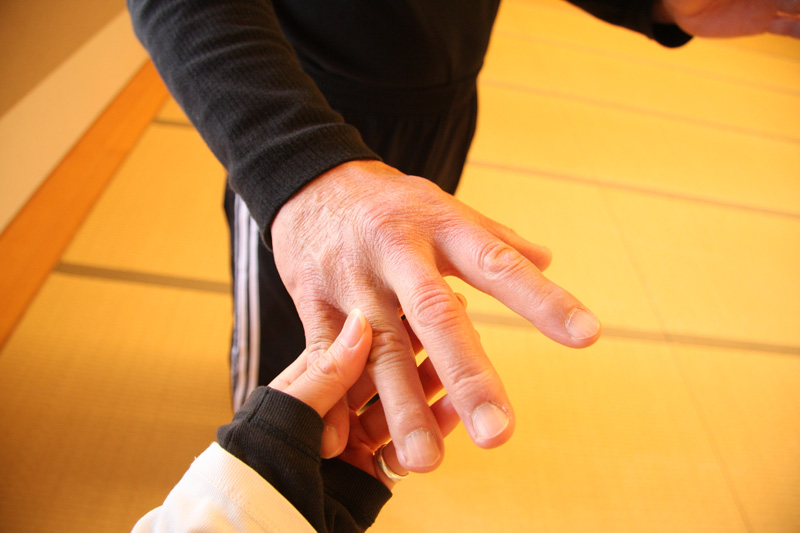 太極拳(Tai Chi)合宿 from LA_b0123371_2143451.jpg