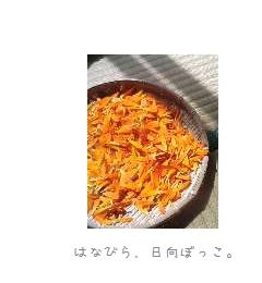b0120001_21544337.jpg