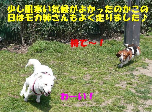 f0121712_22474729.jpg