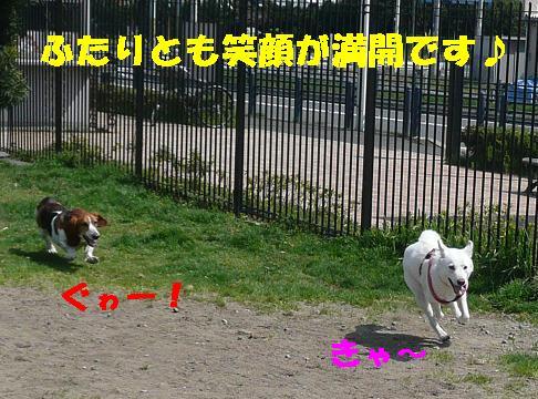 f0121712_22511177.jpg