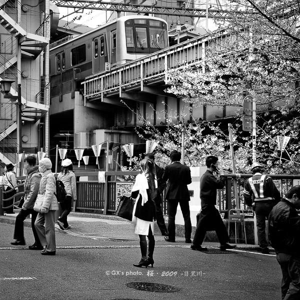 目黒川・桜景色 #02_e0117517_23375859.jpg