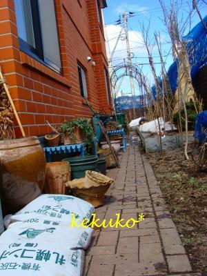 f0170524_1246838.jpg