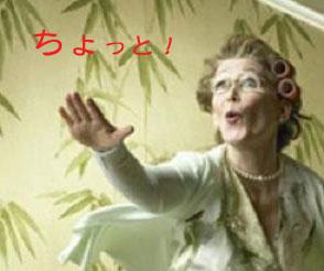 コケーコッコ・・・・な夜_a0019032_18281176.jpg