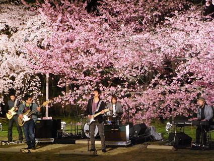 3/25 NHK「春うた」京都 醍醐寺にて_e0175260_20494441.jpg