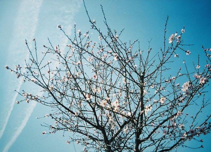 3月30日♪     _c0009275_2034176.jpg