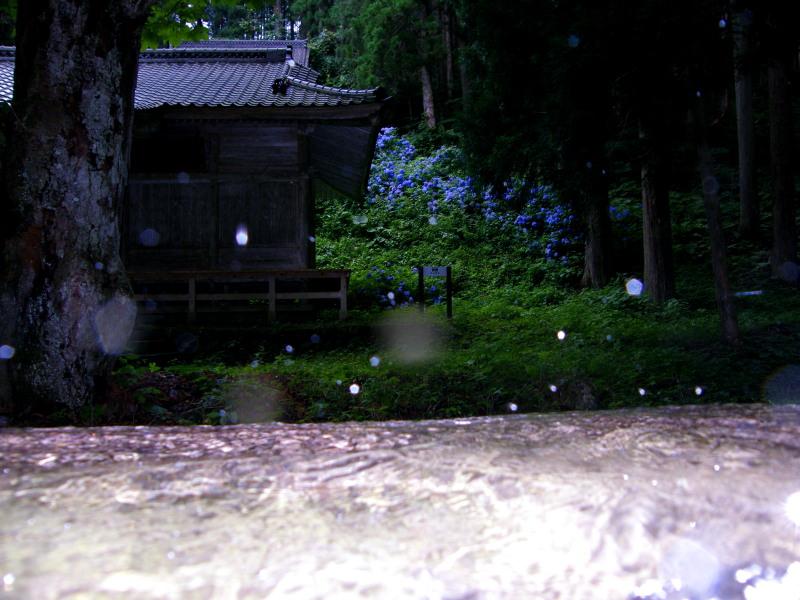 七つ森(その1)_f0075075_165074.jpg