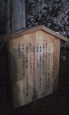 六義園のしだれ桜_e0013178_23319100.jpg