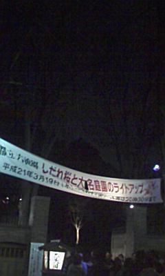六義園のしだれ桜_e0013178_233195.jpg