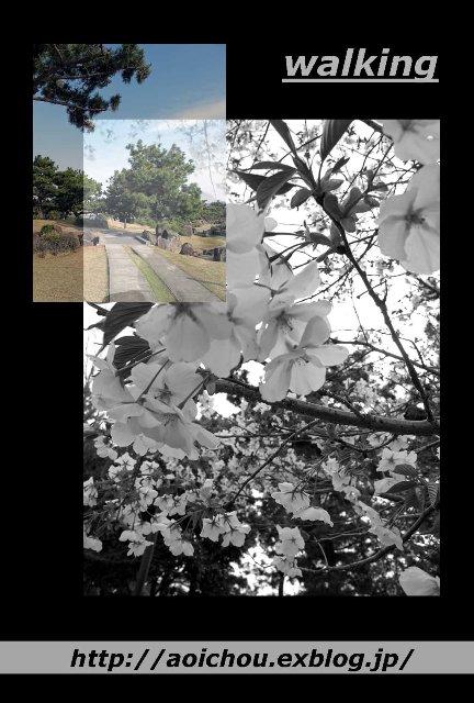f0120483_18481286.jpg