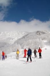 YAMABOKU CAT ツアーの写真 (12年ぶりのスキー その2)_a0076693_1830076.jpg