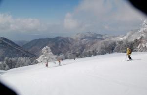 YAMABOKU CAT ツアーの写真 (12年ぶりのスキー その2)_a0076693_18301160.jpg