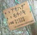 b0099994_11562178.jpg