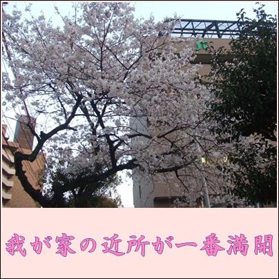 f0148595_23321789.jpg