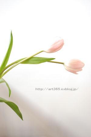 f0166300_15272572.jpg