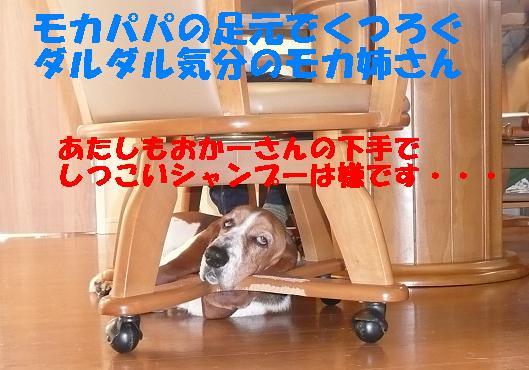 f0121712_0245058.jpg